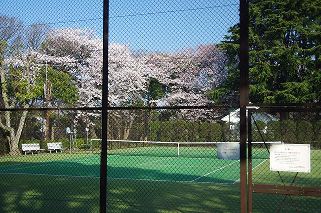 1503テニス発祥の地-2