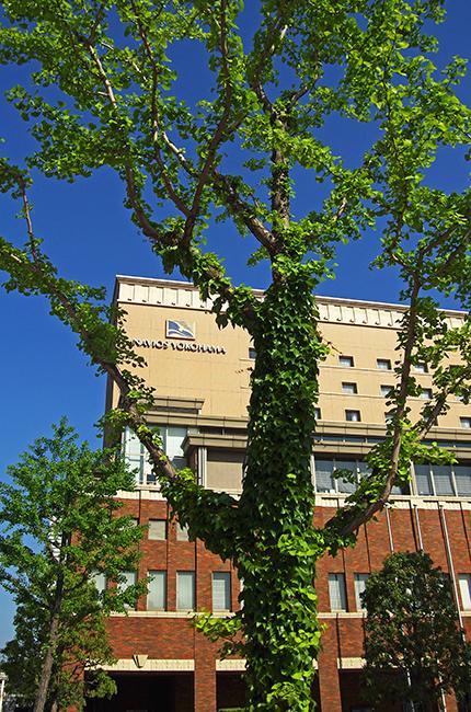 横浜ナビオス1505-5