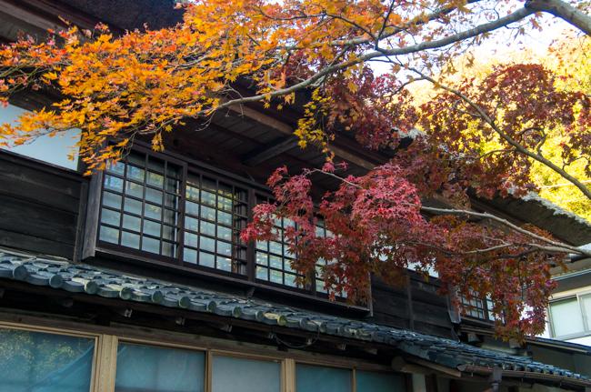鎌倉海蔵寺の紅葉-2