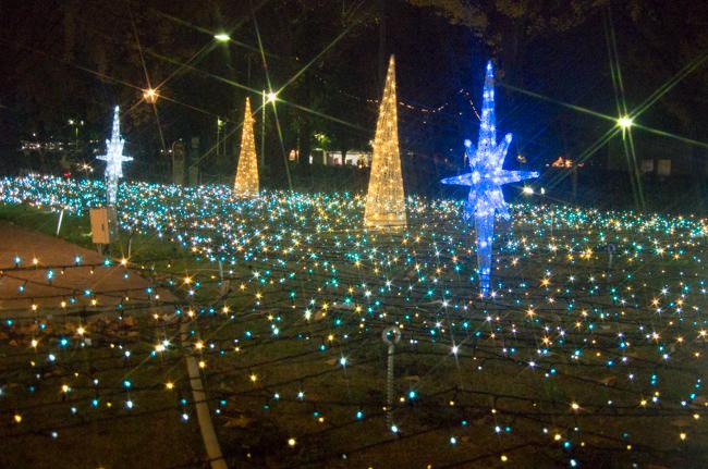 横浜マリンタワークリスマス-8