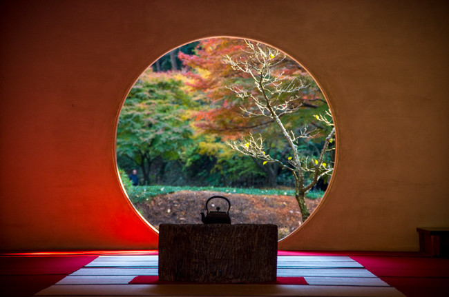鎌倉 明月院の秋 2015