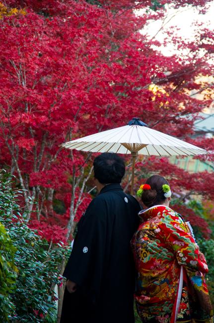 鎌倉海蔵寺の紅葉-10