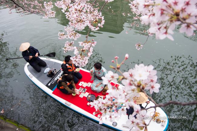 大岡川桜まつり160403-15