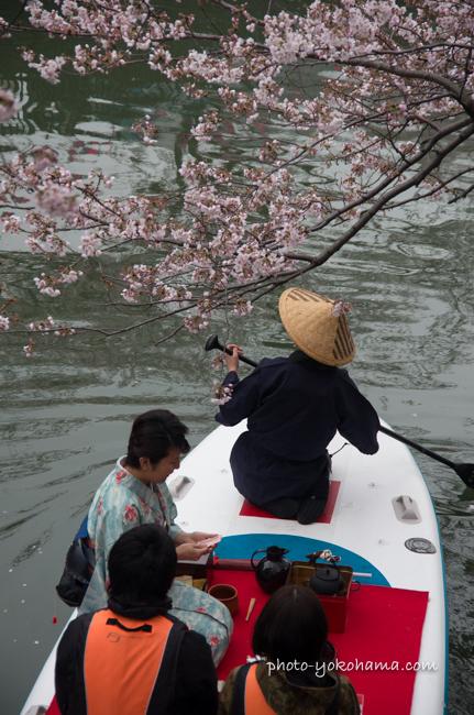 大岡川桜まつり160403-20